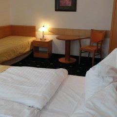 Hotel Máchova 3* Стандартный номер с различными типами кроватей фото 8