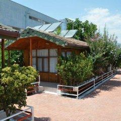 Отель Baba Motel