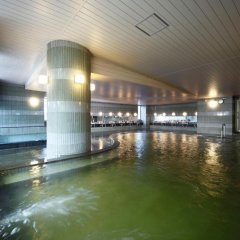 Nogi Onsen Hotel Насусиобара бассейн фото 2
