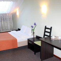 Гостиница Ирис 3* Номер Комфорт разные типы кроватей фото 12