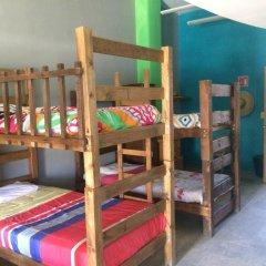 Baja's Cactus Hostel Стандартный номер фото 3