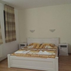 Отель Buhlevata Vodenitsa 3* Стандартный номер с различными типами кроватей фото 3