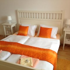 Отель Penzion U Vlcku 3* Стандартный номер