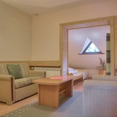 Отель Jastrzębia Turnia Стандартный номер с двуспальной кроватью фото 2