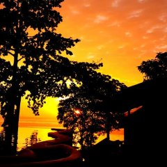 Отель Clear View Resort 3* Бунгало с различными типами кроватей фото 26