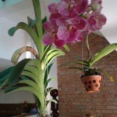 Отель Flower Garden Homestay 3* Улучшенный номер фото 33