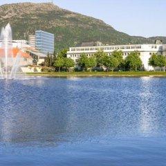 Отель Villa Terminus Норвегия, Берген - отзывы, цены и фото номеров - забронировать отель Villa Terminus онлайн приотельная территория