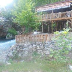 Basturk Dinlenme Tesisi Турция, Buyukcakir - отзывы, цены и фото номеров - забронировать отель Basturk Dinlenme Tesisi онлайн фото 3