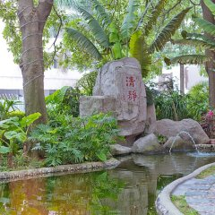 New Forestry Hotel Сямынь бассейн
