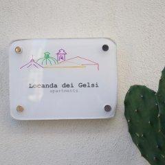 Отель Locanda dei Gelsi Италия, Палермо - отзывы, цены и фото номеров - забронировать отель Locanda dei Gelsi онлайн с домашними животными