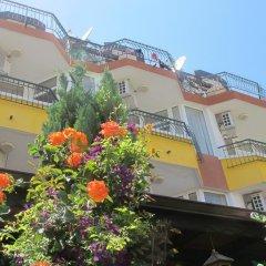 Отель Sunny Island Obzor Болгария, Аврен - отзывы, цены и фото номеров - забронировать отель Sunny Island Obzor онлайн фото 2