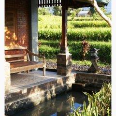 Отель Ti Amo Bali Resort 3* Стандартный номер с различными типами кроватей фото 4