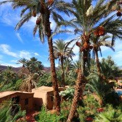 Отель Ecolodge Bab El Oued Maroc Oasis пляж