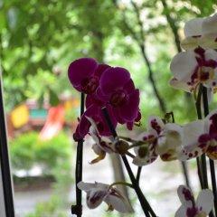 Отель Apartament Orchidea Centrum
