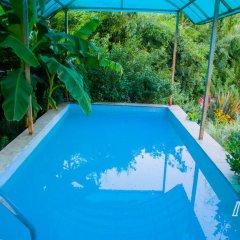 Гостиница Gornaya Lavanda Guest House бассейн