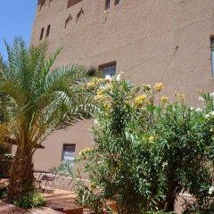 Отель Le Sauvage Noble Марокко, Загора - отзывы, цены и фото номеров - забронировать отель Le Sauvage Noble онлайн фото 11