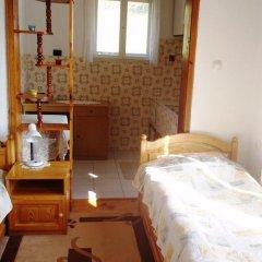 Отель Guest House Dangulevi Чепеларе в номере
