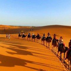 Отель Merzouga Desert Марокко, Мерзуга - отзывы, цены и фото номеров - забронировать отель Merzouga Desert онлайн приотельная территория