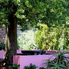 Отель A Casa Do Canto Понта-Делгада фото 3