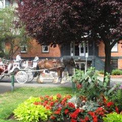 Отель James Bay Inn Hotel, Suites & Cottage Канада, Виктория - отзывы, цены и фото номеров - забронировать отель James Bay Inn Hotel, Suites & Cottage онлайн фото 4