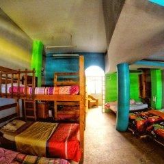 Baja's Cactus Hostel Стандартный номер фото 5