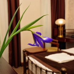 Отель Boutique Villa Mtiebi 4* Стандартный номер с двуспальной кроватью фото 13