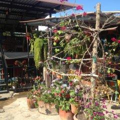 Отель Marjenny Гондурас, Копан-Руинас - отзывы, цены и фото номеров - забронировать отель Marjenny онлайн фото 8