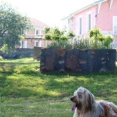 Отель Posada Rolisas с домашними животными