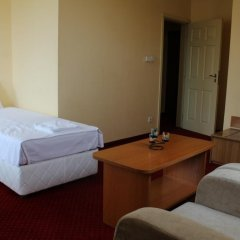 Отель Alegro Hotel Болгария, Велико Тырново - 1 отзыв об отеле, цены и фото номеров - забронировать отель Alegro Hotel онлайн удобства в номере