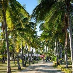 Отель Musket Cove Island Resort & Marina 4* Стандартный номер с различными типами кроватей фото 6