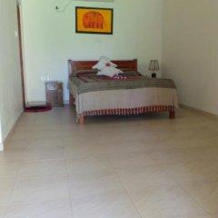 Отель Lanka Rose Guest House Номер Делюкс с различными типами кроватей фото 4