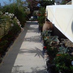 Отель Marina's Studios Греция, Остров Санторини - отзывы, цены и фото номеров - забронировать отель Marina's Studios онлайн фото 20