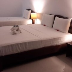 Отель Bird Scenery Номер Делюкс с различными типами кроватей фото 24