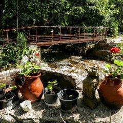 Отель The Water Mill Болгария, Правец - отзывы, цены и фото номеров - забронировать отель The Water Mill онлайн фото 12