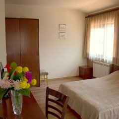 Bizev Hotel 3* Стандартный номер с различными типами кроватей фото 2