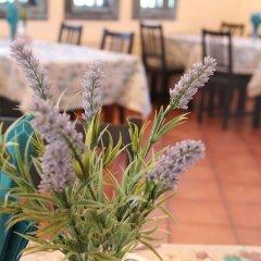 Отель Holiday Village Kedar Болгария, Долна баня - отзывы, цены и фото номеров - забронировать отель Holiday Village Kedar онлайн помещение для мероприятий
