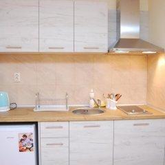 Апартаменты Elit Pamporovo Apartments Студия с различными типами кроватей фото 8