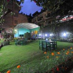 Отель Acme Guest House Непал, Катманду - отзывы, цены и фото номеров - забронировать отель Acme Guest House онлайн фото 2
