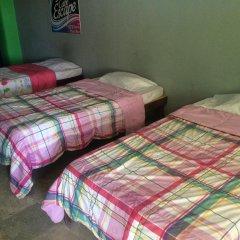Baja's Cactus Hostel Стандартный номер фото 4