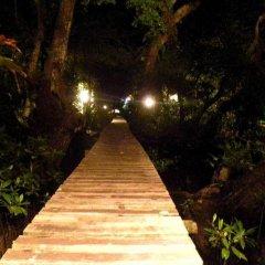 Отель Pacific Treelodge Resort Федеративные Штаты Микронезии, Косраэ - отзывы, цены и фото номеров - забронировать отель Pacific Treelodge Resort онлайн приотельная территория