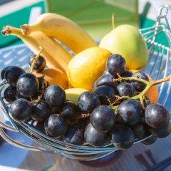 Гостиница Гавана питание фото 3