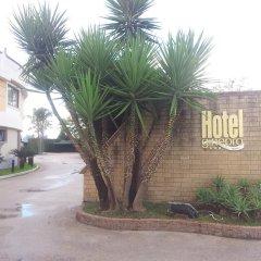 Hotel Ginepro 3* Стандартный номер фото 4