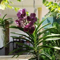 Апартаменты Coral Palm Villa and Apartment интерьер отеля фото 2