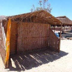 Отель Antika Beach Camp Nuweiba Бунгало с различными типами кроватей