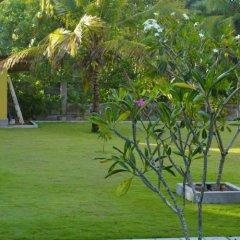 Отель Villa 61 Шри-Ланка, Берувела - отзывы, цены и фото номеров - забронировать отель Villa 61 онлайн фото 9