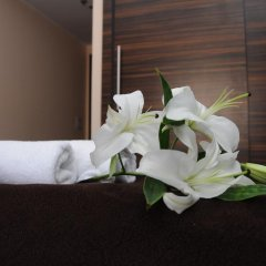 Green Hotel Budapest 4* Стандартный номер фото 4