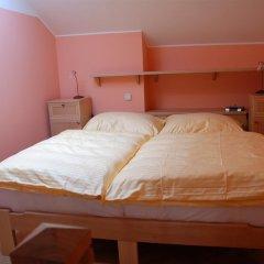 Отель Pension Pohádka Praha 3* Номер Делюкс