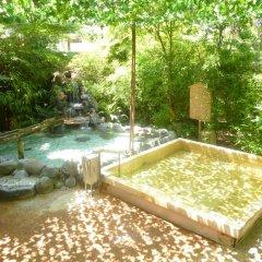 Отель Wellness Forest Ito Ито бассейн фото 3