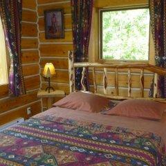 Отель Mica Mountain Lodge & Log Cabins детские мероприятия