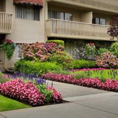 Отель Royal Scot Hotel & Suites Канада, Виктория - отзывы, цены и фото номеров - забронировать отель Royal Scot Hotel & Suites онлайн фото 7